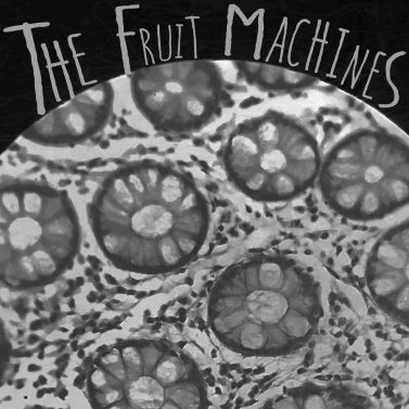 ANTIGRAVITY-OCTOBER-2017-REVIEWS-MUSIC-The-Fruit-Machines-The-Fruit-Machines